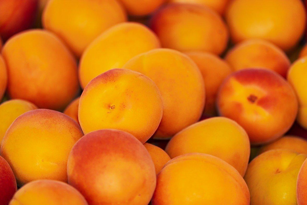 Иранские персики не пустили в Подмосковье, фото-1