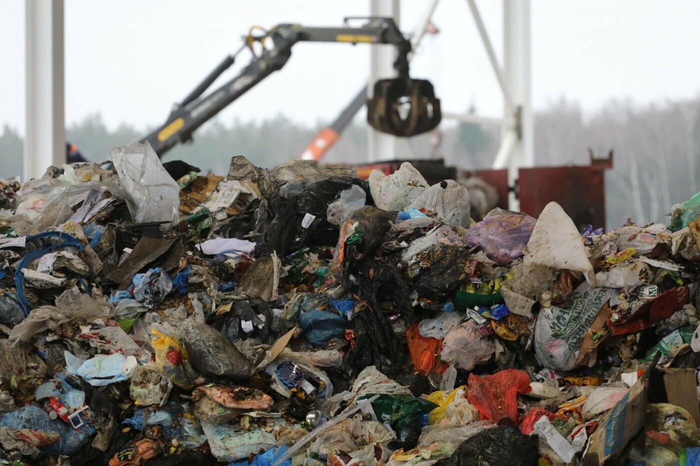 Из лесов Московской области в этом году вывезено 20 тысяч кубометров мусора