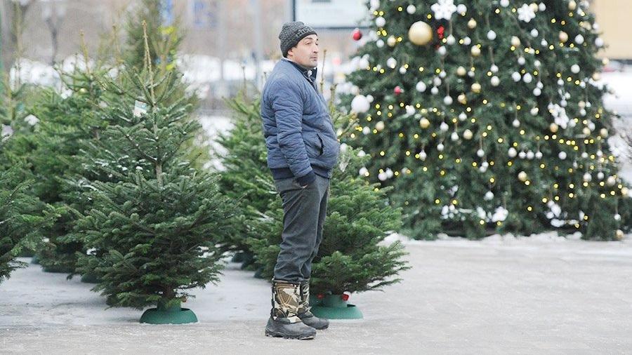 С 20 декабря начнут работу елочные базары, фото-1