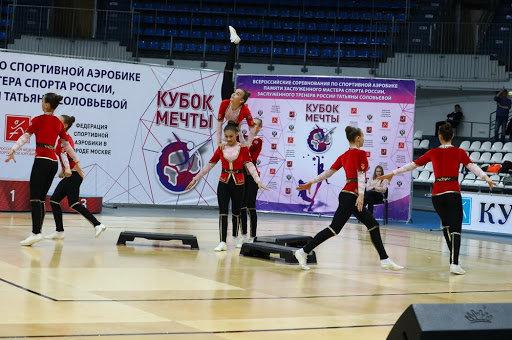 В Троицке прошел всероссийский турнир по аэробике, фото-1