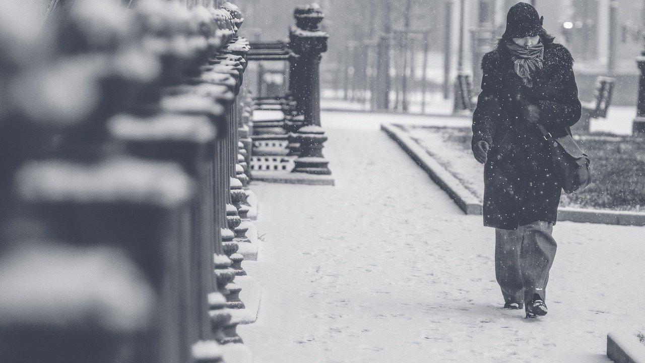 К концу недели ожидается снегопад в Московской области , фото-1