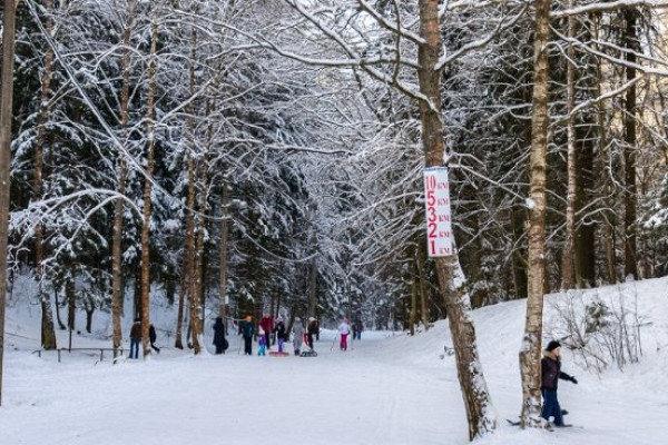 В Троицке реконструируют лыжный центр спортивной базы «Лесная», фото-1
