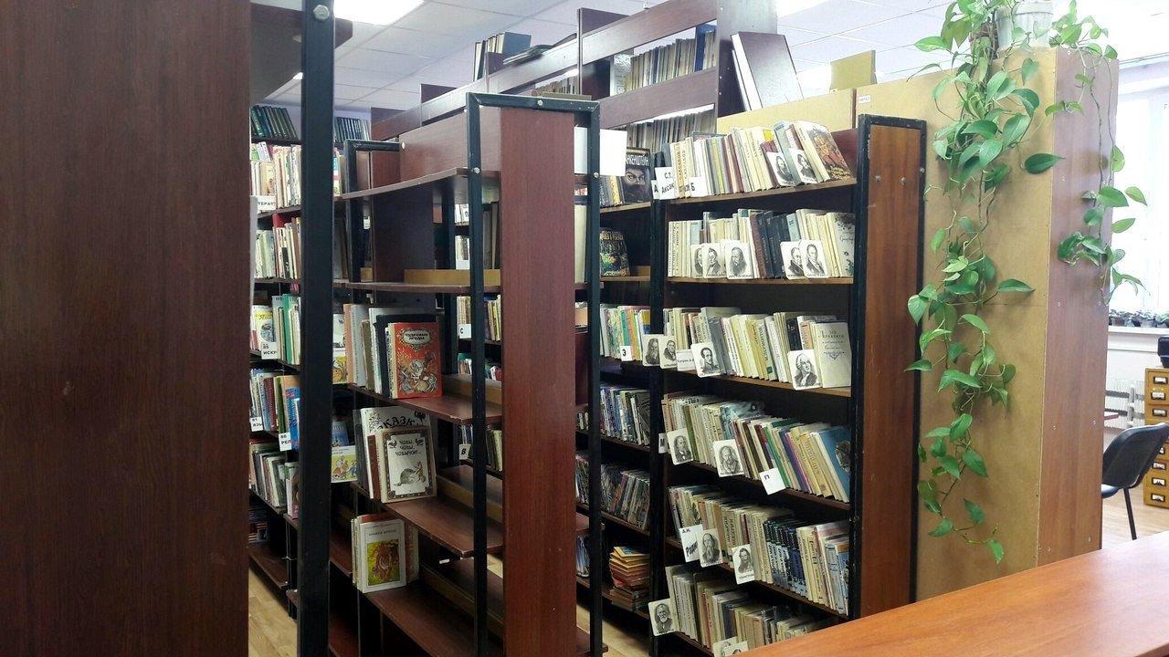 В Троицке представят в библиотеке №2 книжную выставку, фото-1
