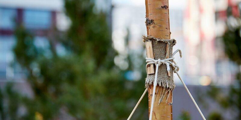 В Москве продлят прием заявок на высадку именных деревьев , фото-1