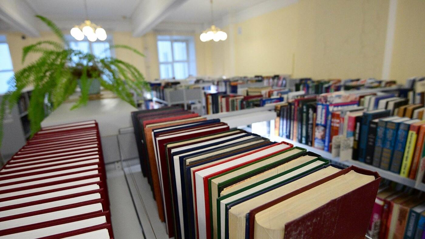 С командами волонтеров поработают библиотекари, фото-1
