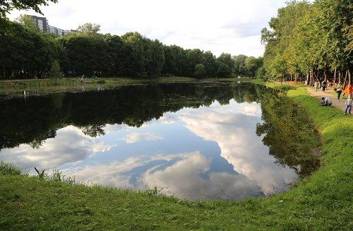 В пруду в ТиНАО обнаружен труп подростка, фото-1